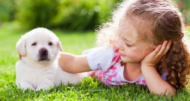 girl laying in grass petting a puppy