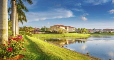 palm trees and beautiful homes in florida with green grass and pond